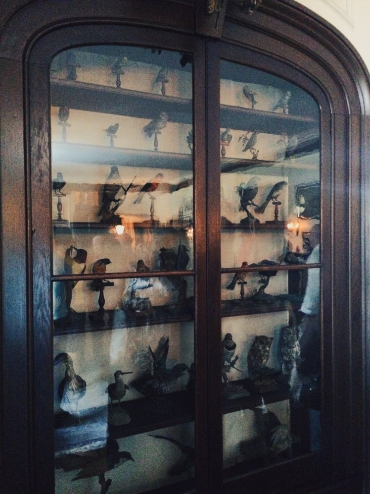 My brother is a huge birder so I had to show him this. FDR bird collection.